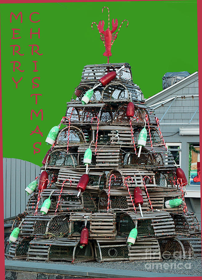 Lobster Christmas Tree by Eric Pearson