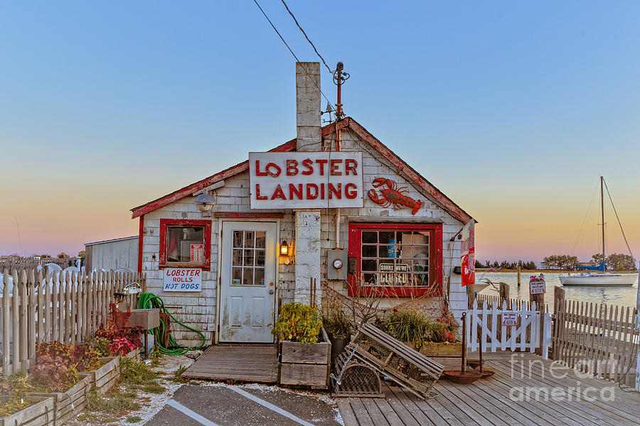 Lobster Photograph - Lobster Landing Sunset by Edward Fielding