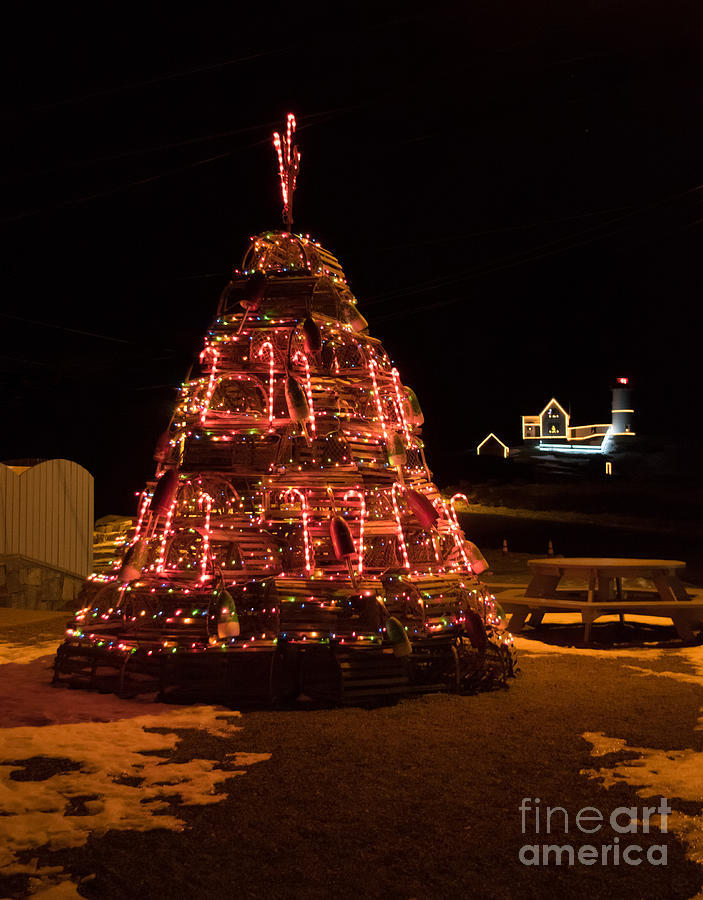 Lobster Trap Christmas Tree at Nubble by Patrick Fennell