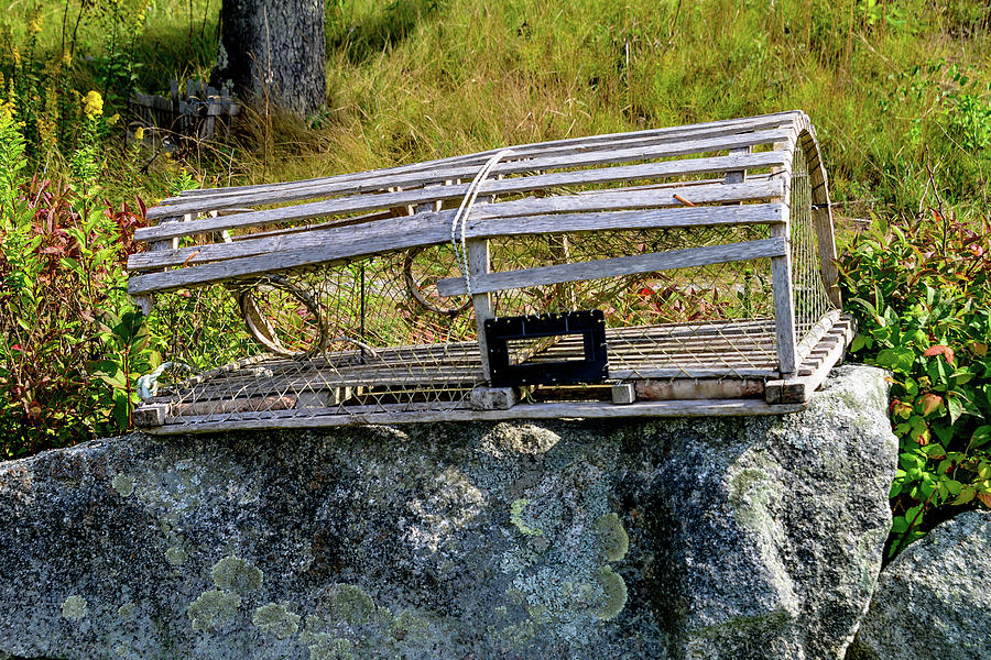 Lobster Trap in Maine by Marilyn Burton
