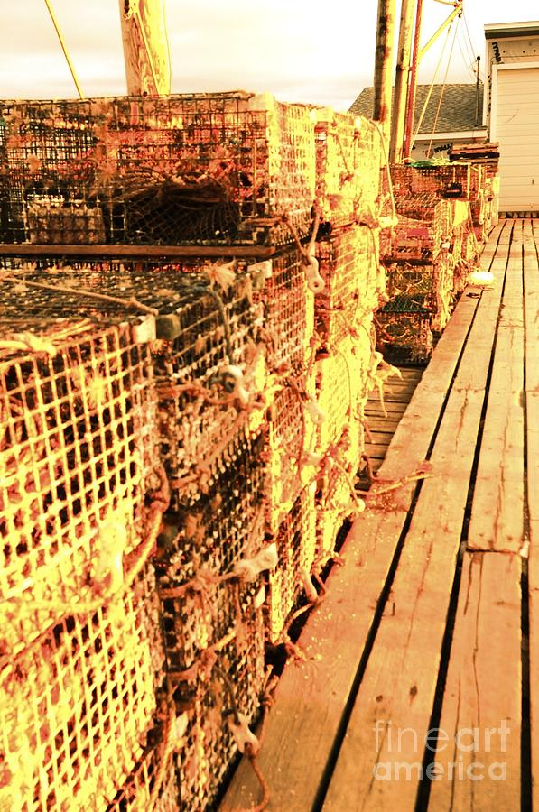 Lobster Traps Photograph - Lobster Traps by Elizabeth Lawrence