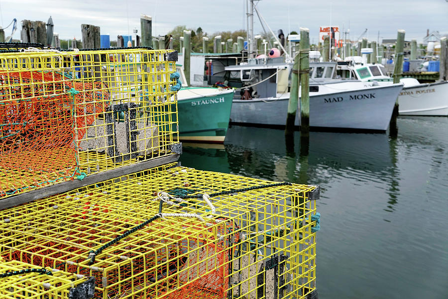 Lobster Traps in Galilee by NANCY DE FLON