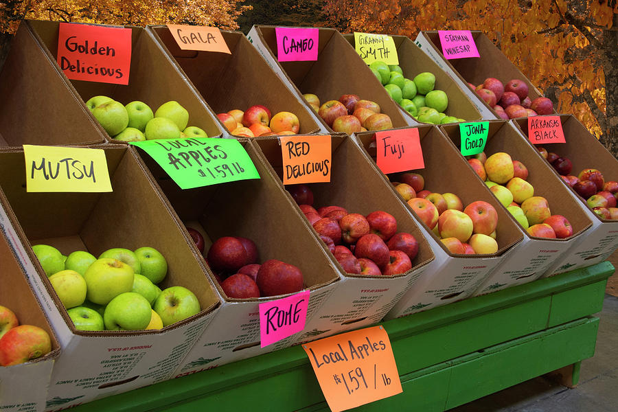 Apples Photograph - Local Apples For Sale by Mitch Spence