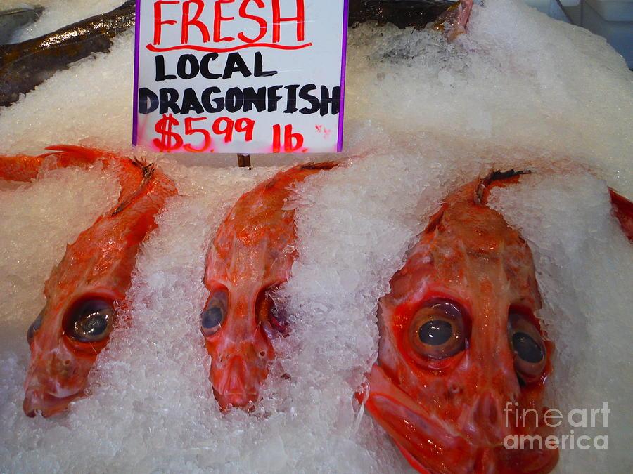 Local Seattle Dragonfish by Paddy Shaffer