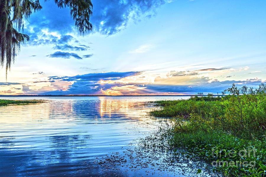 Lochloosa Photograph - Lochloosa Lake by Anthony Baatz