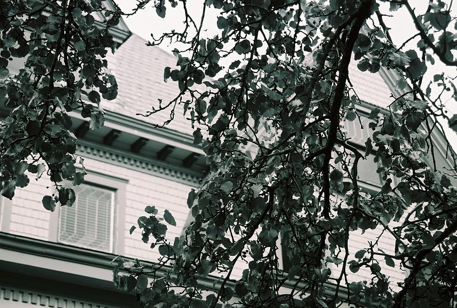 Windows Photograph - Locked Away by Jessica Burgett