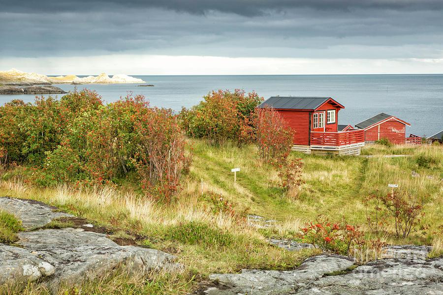 Norway Photograph - Lofoten Cabins 2 by Timothy Hacker