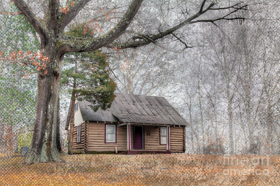 Travel Photograph - Log Cabin By A Tree by Larry Braun