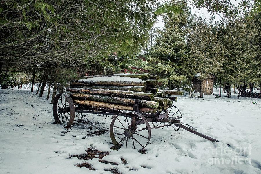 Log Hauler In Winter Photograph
