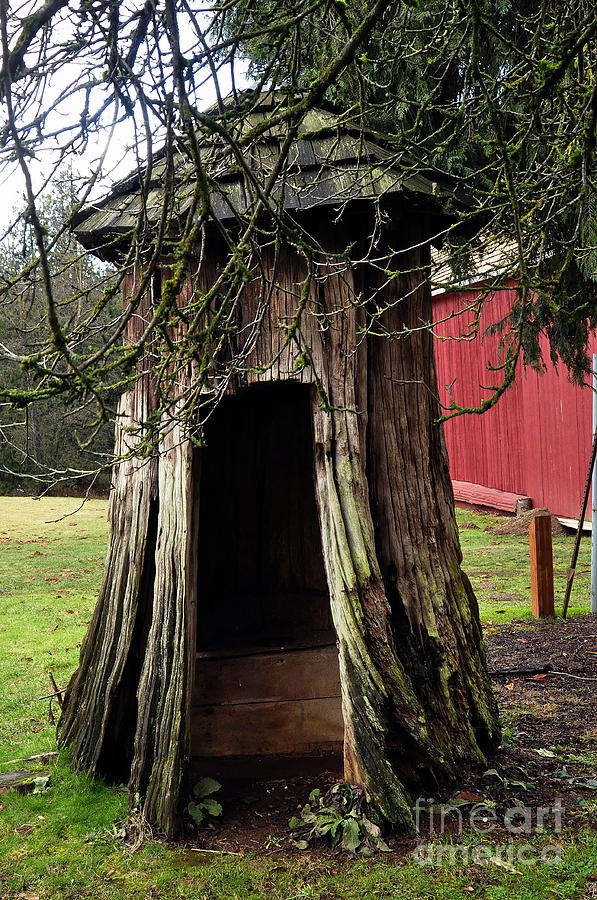 Clay Photograph - Loggers Outhouse by Clayton Bruster