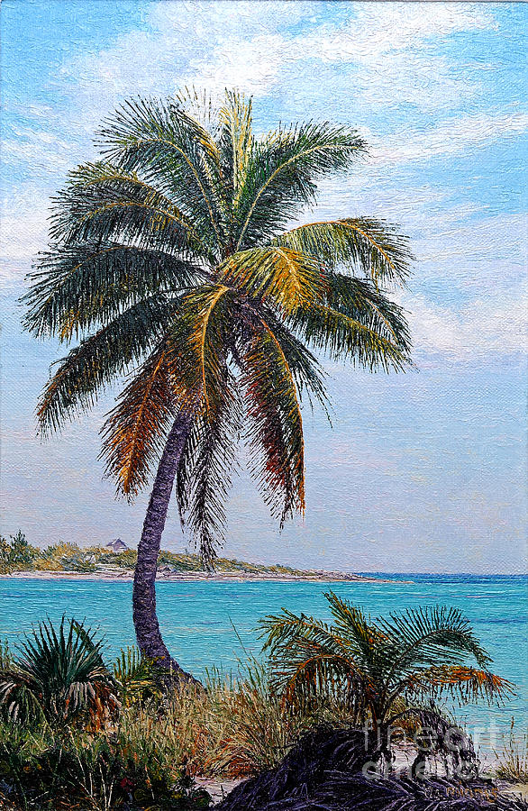 Lone Palm by Eddie Minnis