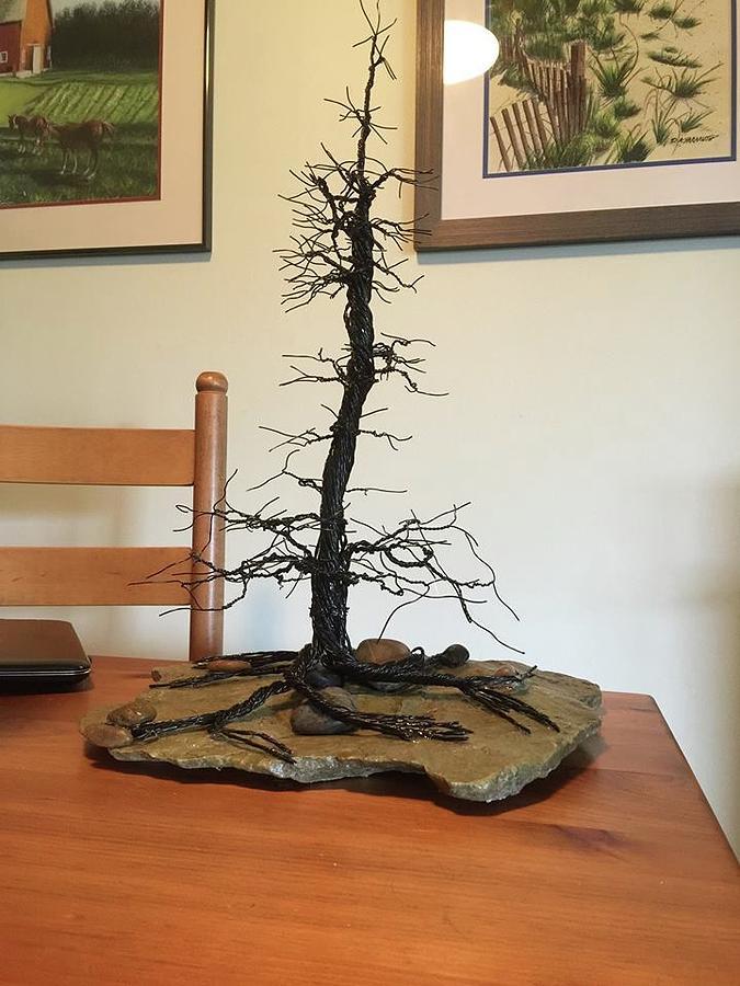 Lone Rugged Pine by Dale Yarmuth