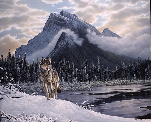 Wolf Painting - Lone Wolf   Mount Rundle Canada. by Eric Wilson