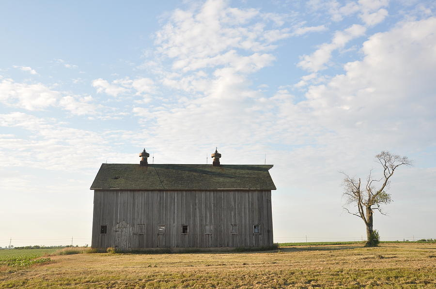 Barns Photograph - Lonely Barn by Daniel Ness