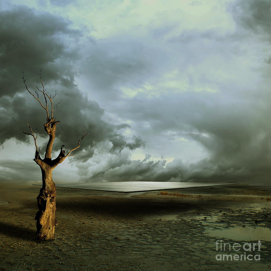 LONELY DEATH by Franziskus Pfleghart