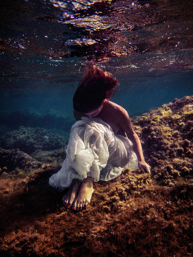 Swim Photograph - Lonely Mermaid by Gemma Silvestre
