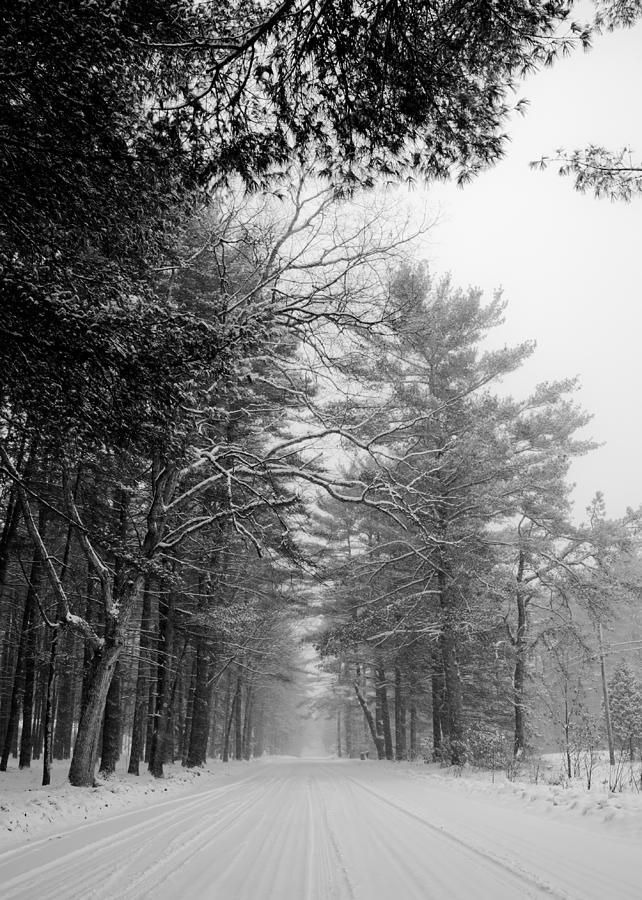 Road Photograph - Lonely Road by Edward Myers