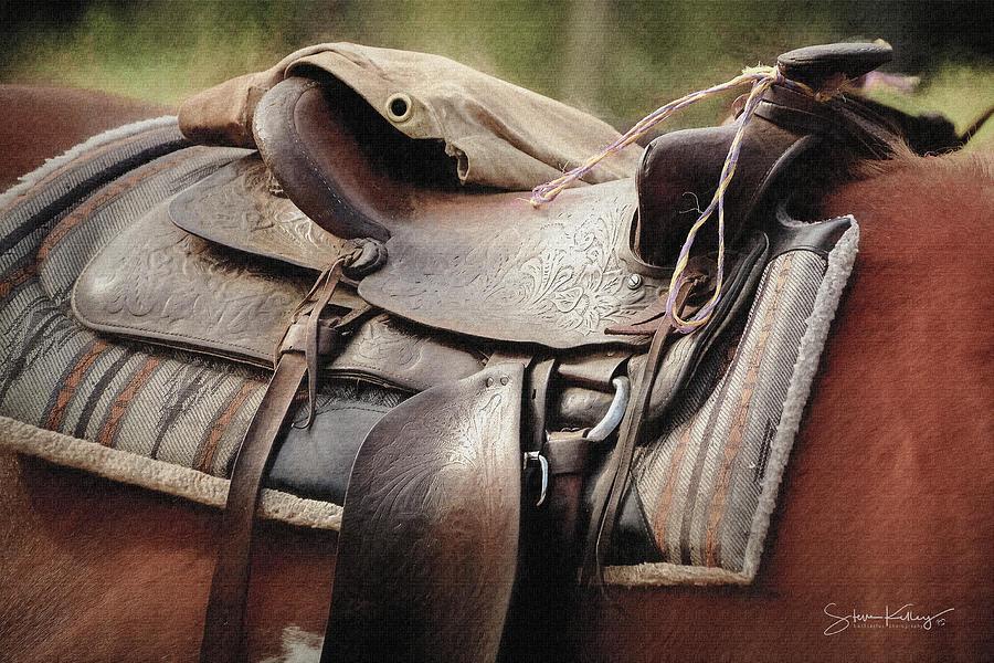 Lonely Saddle  by Steve Kelley