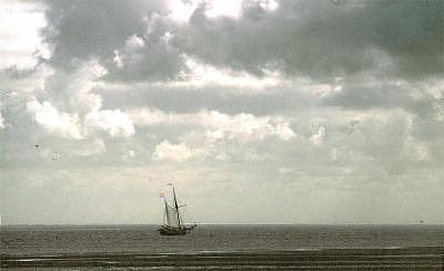Seascape Photograph - Lonely Sailboat by PJ Steinmeijer