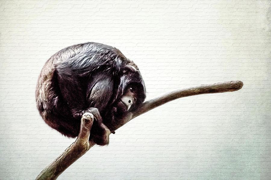 Lonely Urban Chimpanzee  by Tracie Kaska