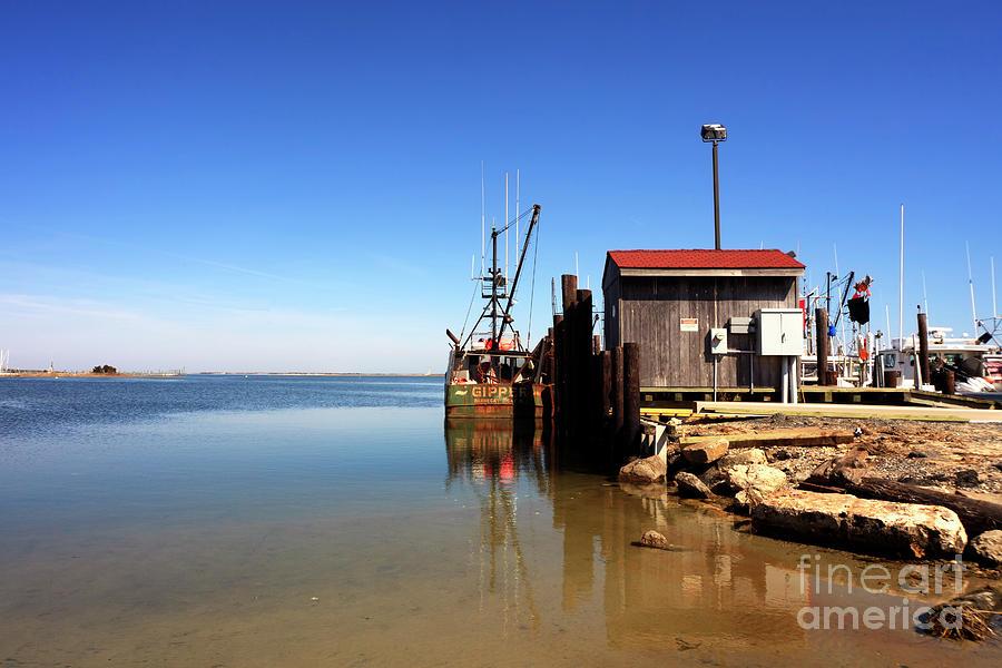 Landscape Photograph - Long Beach Island Bay by John Rizzuto