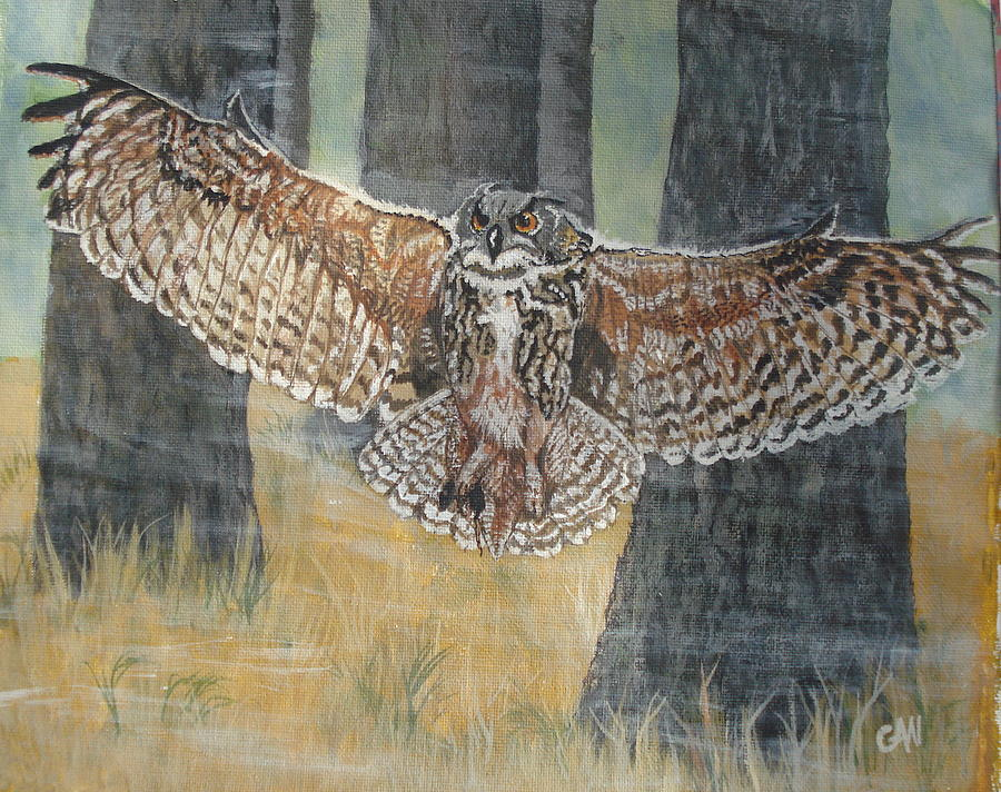Owl Painting - Long Eared Owl by Carol Williams