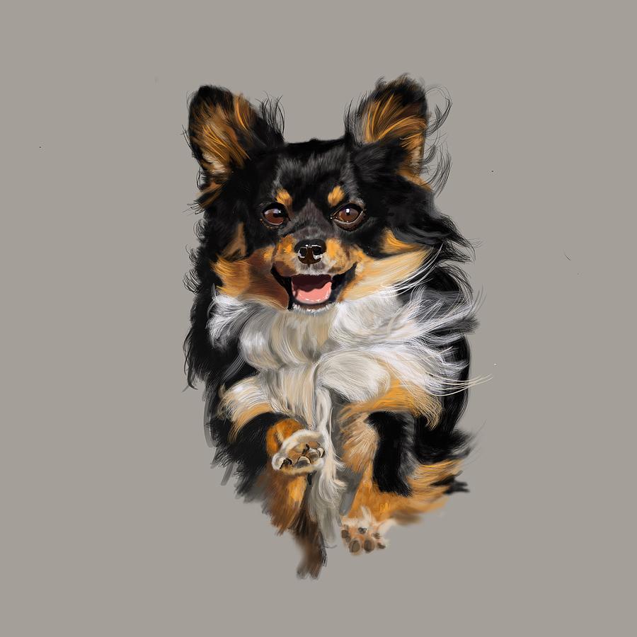 Chihuahua Digital Art - Long Haired Chihuahua  by Victoria Newton