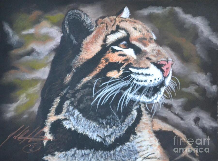 Wildlife Pastel - Looking Away by John Huntsman