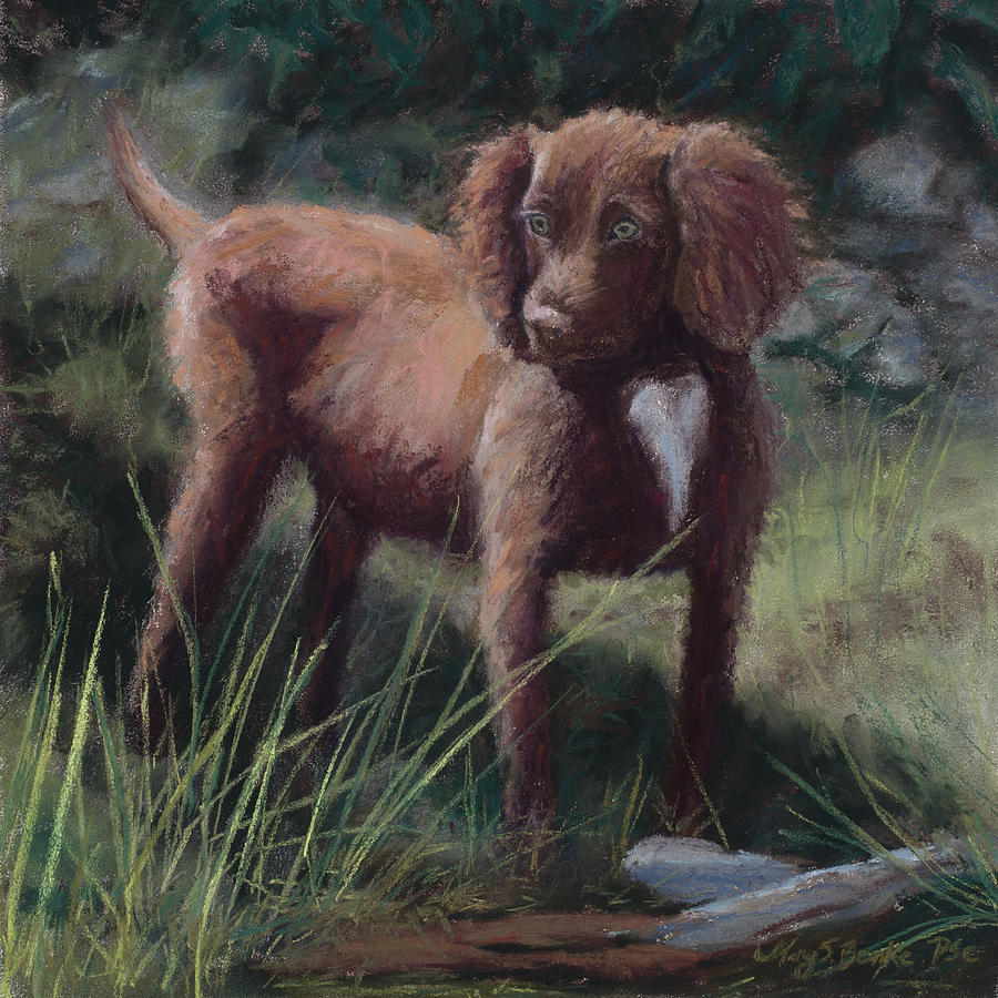 Pedigree Painting - Looking For Adventure by Mary Benke