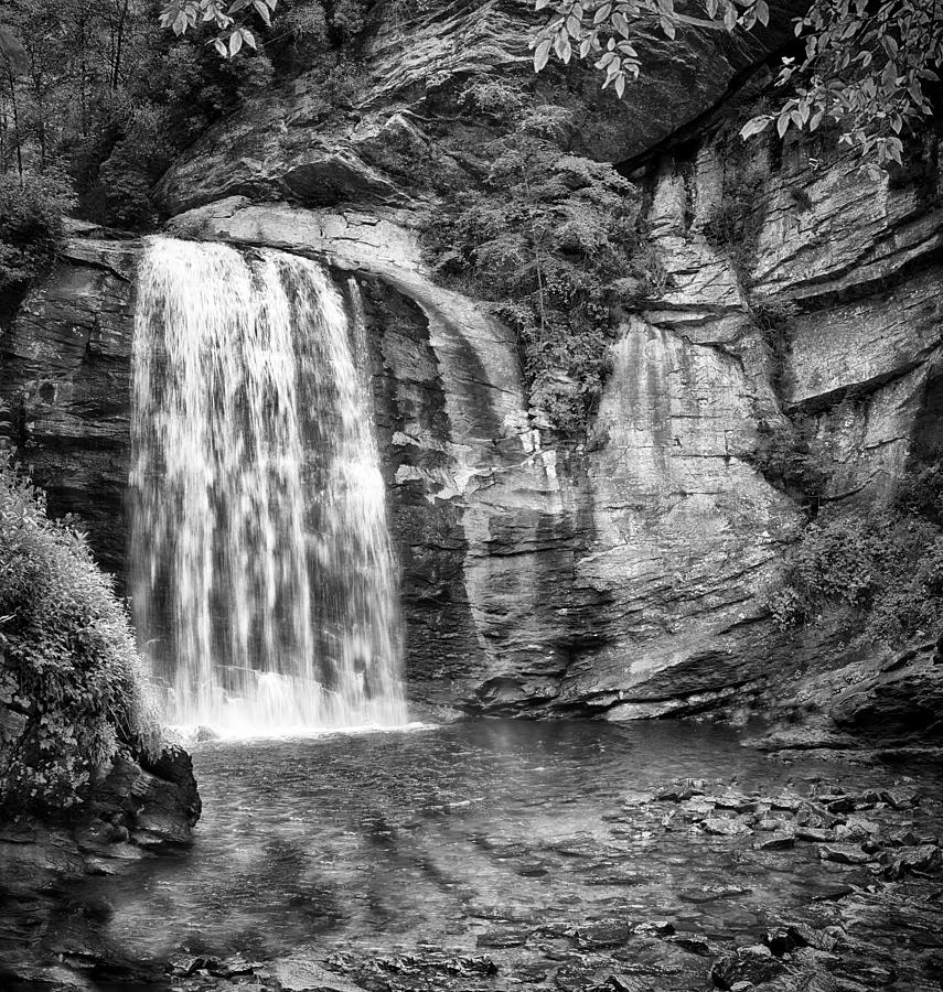 Nature Photograph - Looking Glass Falls by Howard Salmon