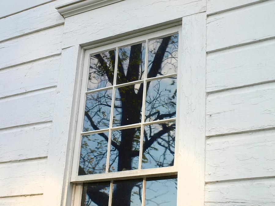 Window Photograph - Looking Glass  by Kristina Scott