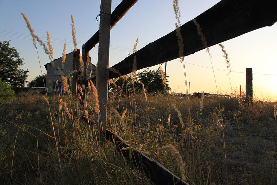 Evening Photograph - Looking Through A Fence by Marina Vatsco