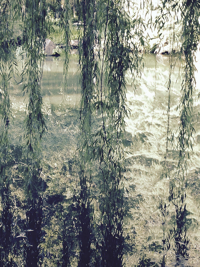 Weeping Willow Photograph - Looking Through The Willow Branches by Linda Geiger