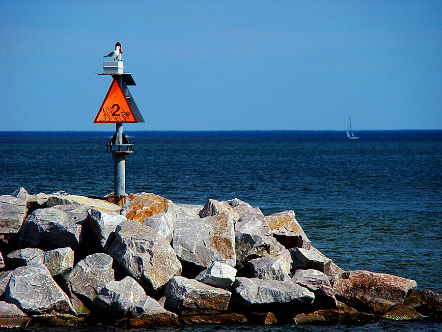 Milwaukee Photograph - Lookout by Todd Zabel