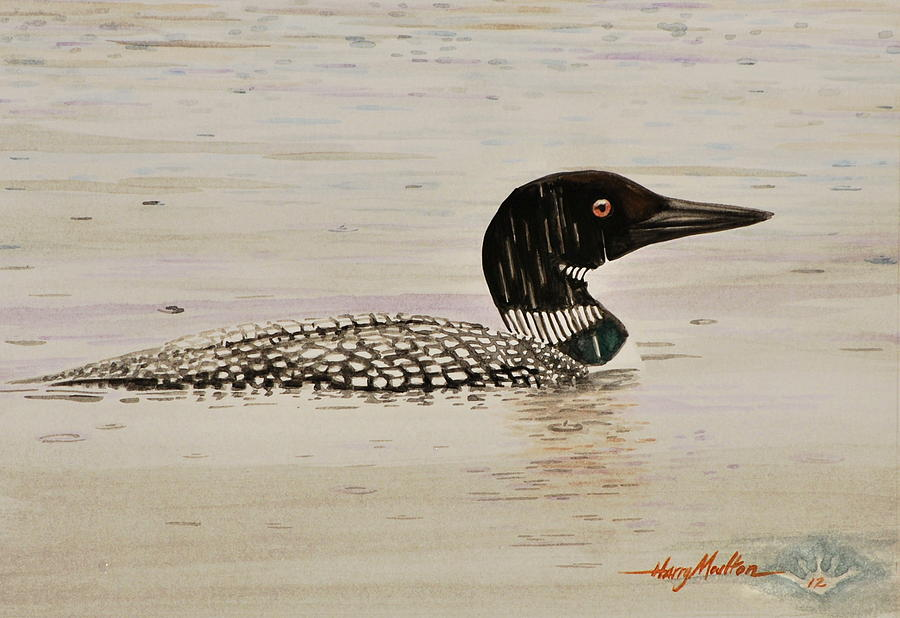 Loon in the Rain by Harry Moulton