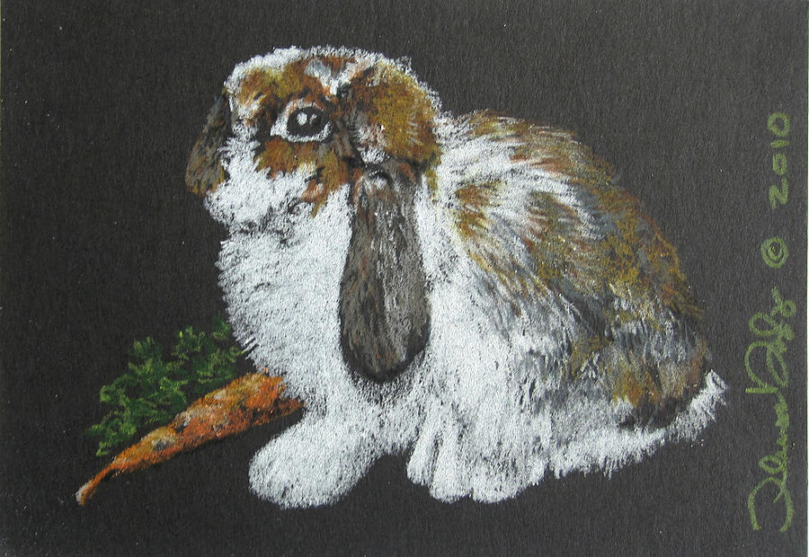 Bunny Drawing - Lop Ear - Mini Art by Theresa Higby