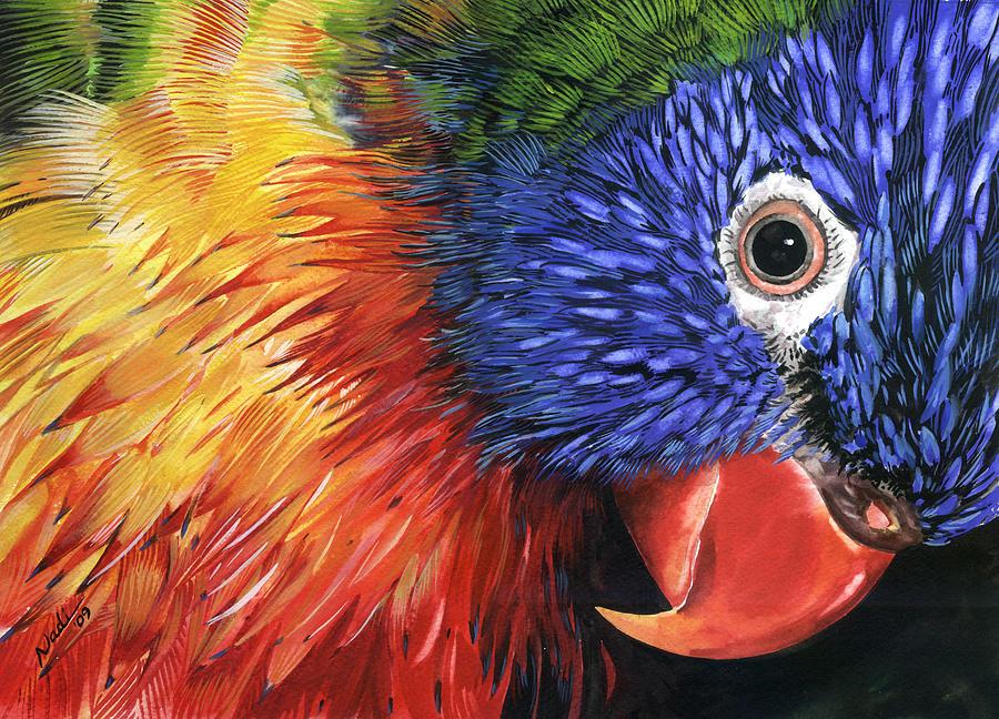Bird Painting - Lorikeet by Nadi Spencer