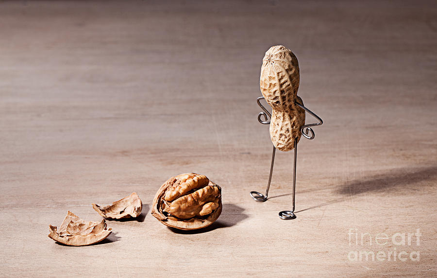 Peanut Photograph - Lost Brains 01 by Nailia Schwarz