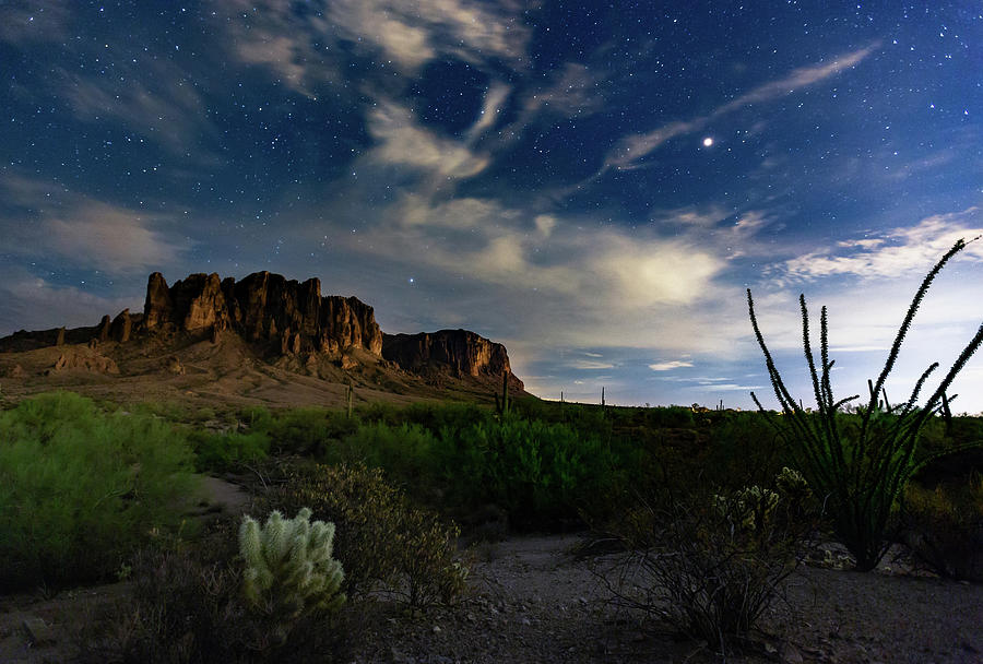 Lost Dutchman by Tassanee Angiolillo
