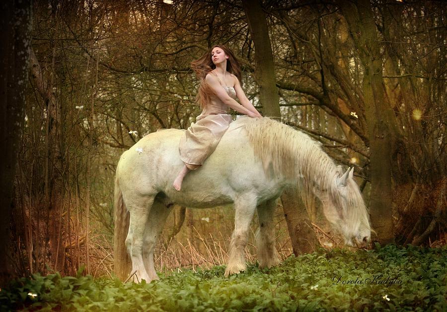 Horse Photograph - Lost Elves 1 by Dorota Kudyba