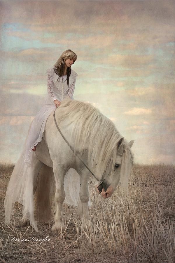 Horse Photograph - Lost Elves 2 by Dorota Kudyba