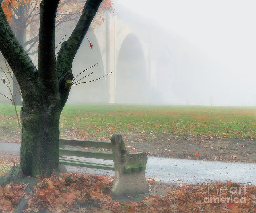Lost In A Fog by Geoff Crego