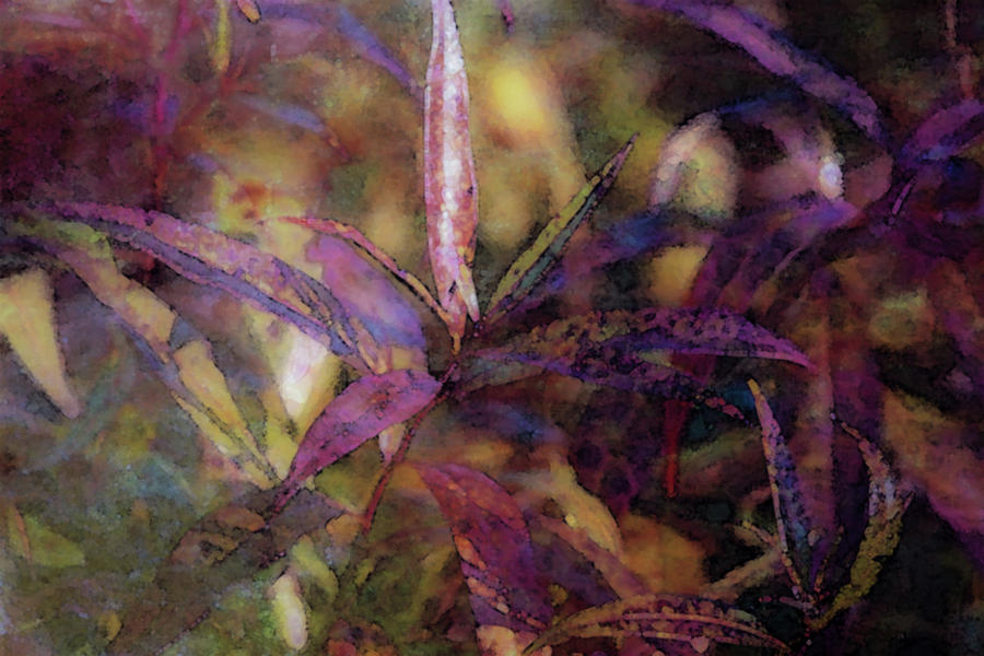 Lost Photograph - Lost Leaves Decorated In Purple 6003 Ldp_2 by Steven Ward