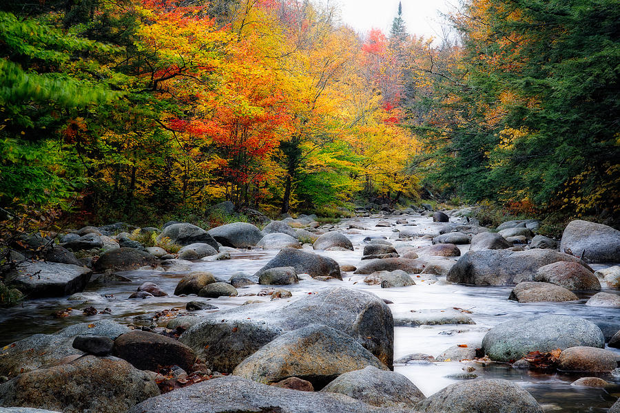 Autumn Photograph - Lost River Gorge At Fall  New Hampshire by George Oze