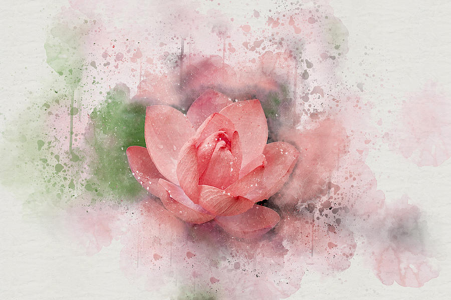 Lotus 8 by Peggy Cooper