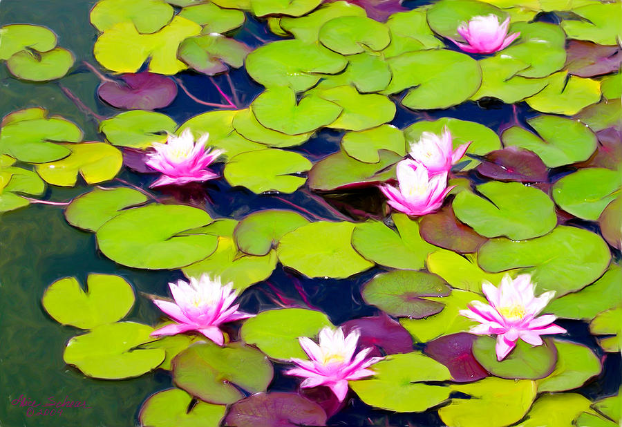 Lotus Blossom Lily Pads Painting By Alice Schear
