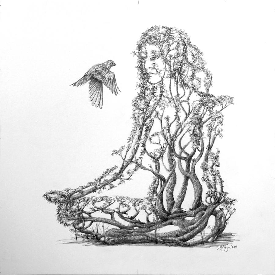 Tree Dancer Drawing - Lotus Dancer by Mark Johnson