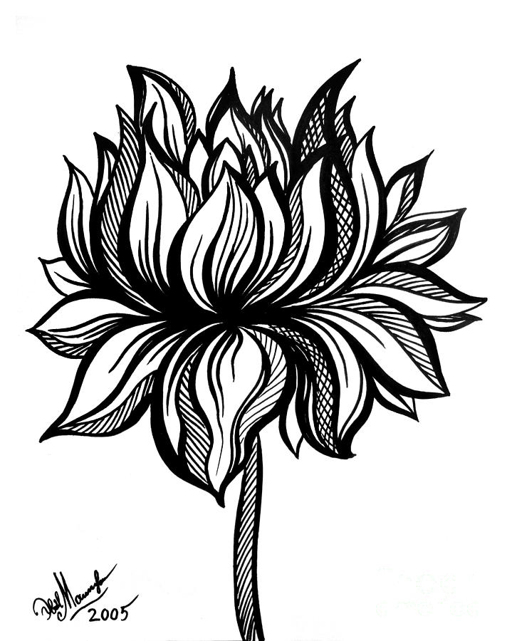 Lotus Flower. Black-white Drawing Drawing by Sofia Metal Queen