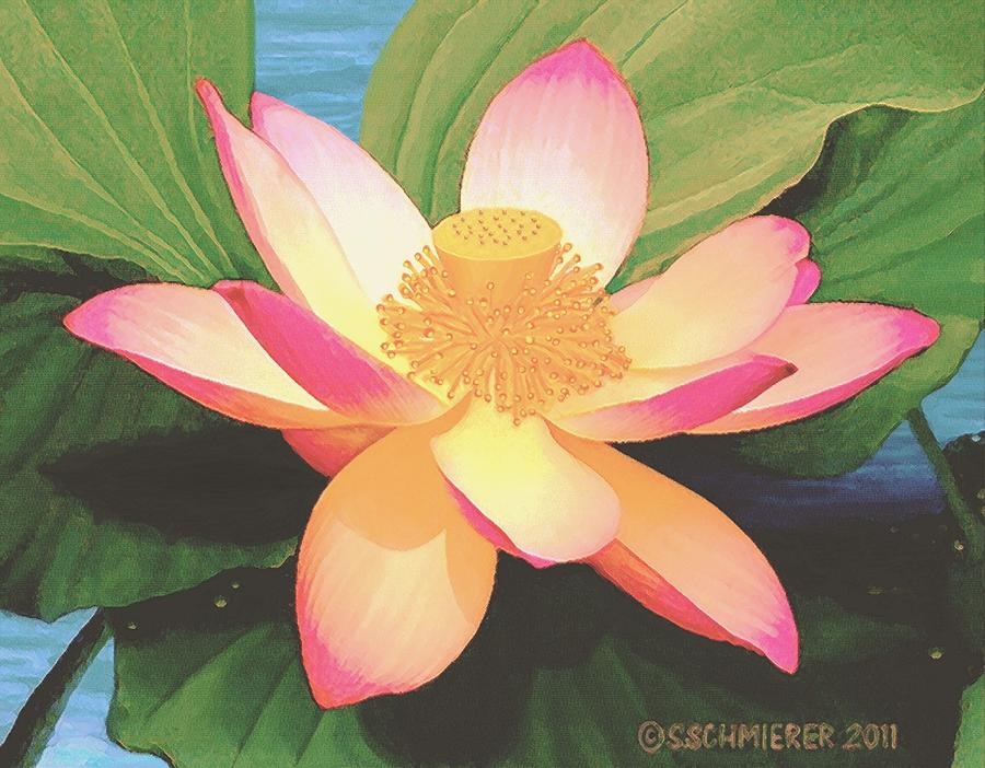 Lotus Flower Painting By Sophia Schmierer