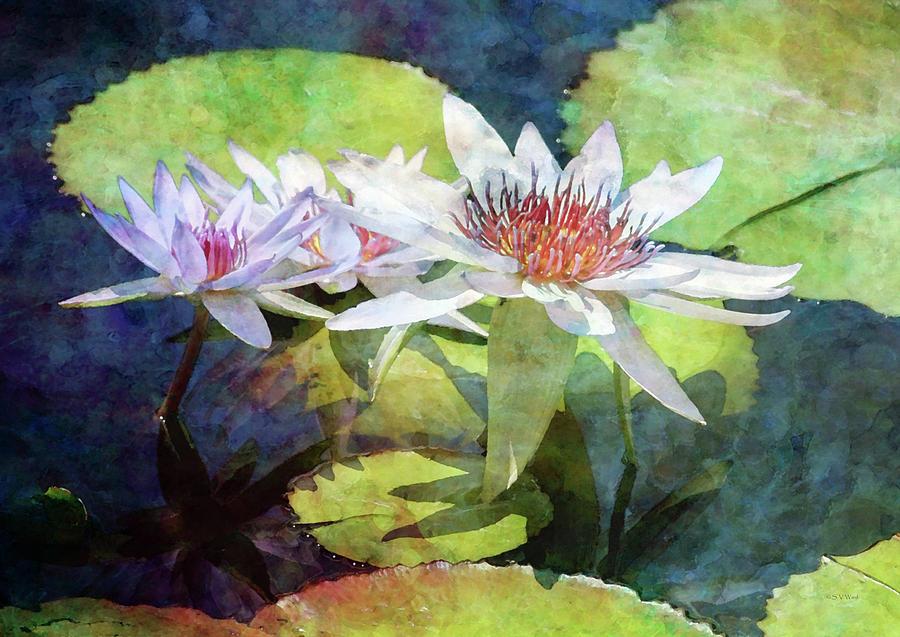 Lotus Trio 2923 IDP_2 by Steven Ward